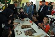 ویژهبرنامه روزجهانیمعلولین دریزد برگزار شد