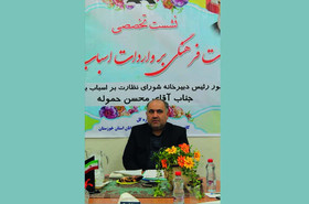 لزوم تشکیل یک اتحادیه صنفی مستقل در حوزه اسباببازی