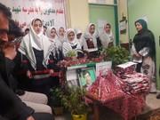 جشن انقلاب در روستاهای تحت پوشش کتابخانه سیار روستایی کانون نمین