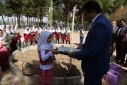 ویژه برنامه روز درختکاری در مراکز فرهنگی هنری کانون استان اصفهان