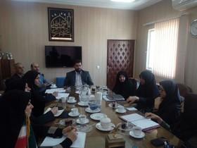 اولین جلسه شورای فرهنگی،هنری کانون استان در سال جدید