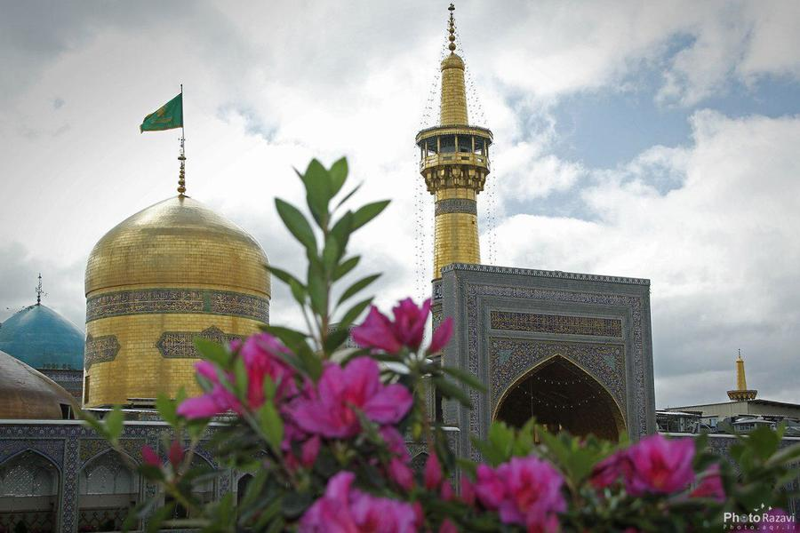 روایت خاطرات زیارت امام رضا علیه السلام از سوی کودکان