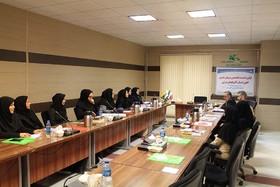 نخستین نشست تخصصی مربیان هنری مراکز کانون آذربایجان شرقی در سال ۹۷ برگزار شد