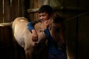 پایان رویاها در سیزدهمین جشنواره بینالمللی فیلم کودکان و نوجوانان پوسان