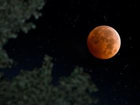 """برگزاری برنامه رصدی """"طولانی ترین ماه گرفتگی قرن ۲۱"""" در مرکز علوم و نجوم"""