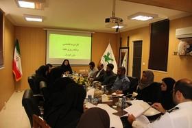 جلسهی کارگروه هفتهی ملی کودک در کانون پرورش فکری سیستان و بلوچستان برگزار شد