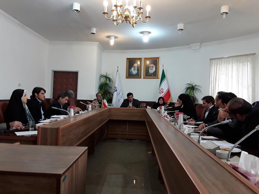 عزم دستگاههای اجرایی استان کرمانشاه برای برگزاری باشکوه شادپیمایی عروسک ها
