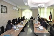 برگزاری دومین جلسه کارگروه کودک و نوجوان بزرگداشت چهلمین سالگرد پیروزی انقلاب در کانون  خراسان جنوبی