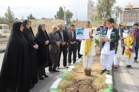 اعضای کانون پرورش فکری سیستان و بلوچستان ۲۷ نهال به یاد ۲۷ شهید سرافراز مدافع وطن کاشتند