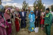 اجرای برنامه روز درختکاری توسط اعضای مرکز 1 همدان با حضور مسئولین استان