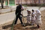 توسعه ی فرهنگ درختکاری با غرس نهال در مراکز کانون چهار محال و بختیاری