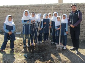گرامیداشت هفته منابع طبیعی در مراکز کانون استان قزوین