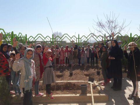 روز در ختکاری در مراکز کانون اصفهان