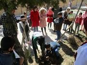 طرح هر کودک یک نهال در کانون گهرو اجرا شد