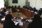 نشست مربیان مسئول جدید مراکز فرهنگی هنری