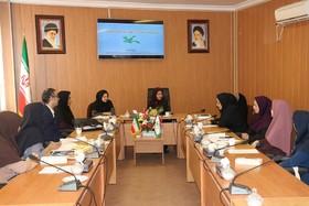 برگزاری اولین نشست تخصصی مربیان ادبی کانون گلستان