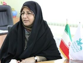 آغاز به کار دبیرخانه جشنواره بینالمللی قصهگویی در کانون فارس