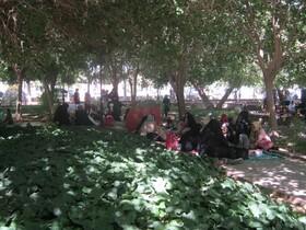 گزارش مصور دور همیهای کودکانه اعضای کانون بشرویه در پارک گلستان