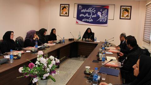 در دومین جلسه کمیته کودک و نوجوان بر کیفیت بخشی برنامه ها تاکید کرد
