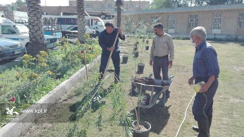 نذر کاشت و هدیه نهال توسط عضو قدیم کانون در اداره کل کانون خوزستان