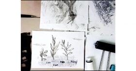 انجمن نقاشی مجازی کانون پرورش فکری استان تهران  برگزار شد