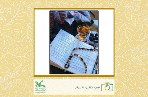 آثار هنری اعضای انجمن عکاسی کانون مازندران