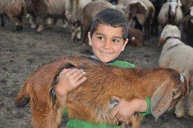 آثار عکاسی نوجوانان عضو مراکز کانون پرورش فکری کهگیلویه و بویراحمد