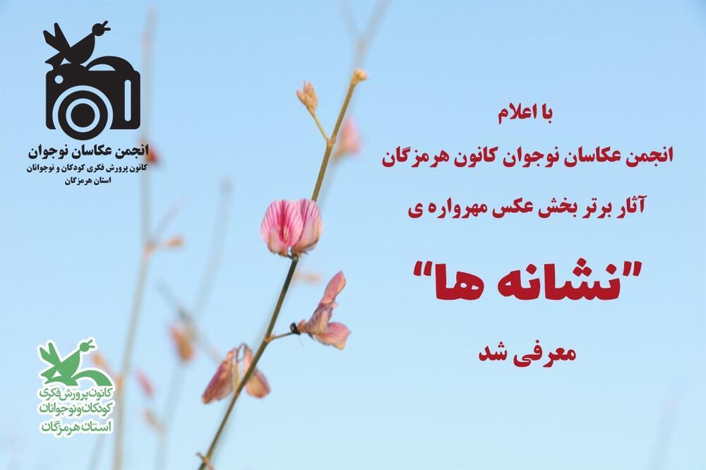 """آثار برتر مهرواره عکس """"نشانه ها"""""""