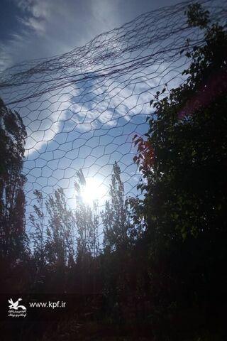 احسان کیومرثی عضو نوجوان مرکز فرهنگی هنری شماره یک کانون سمنان
