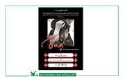 نمایشگاه عکس«بچههای اربعین» در پیاده راه اسفریس بقعه شیخصفیالدین اردبیلی